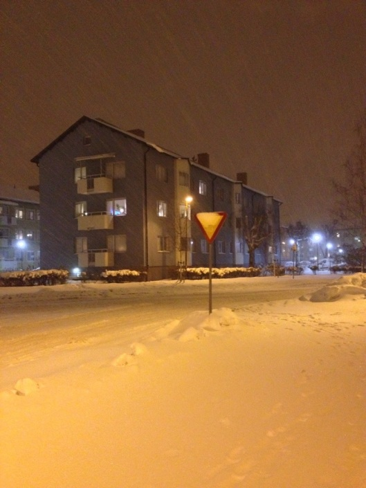 snowing in Sweden.jpg