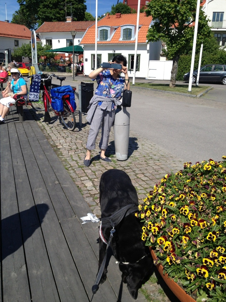 hund Strängnäs gästhamn, mat fika äta.jpg