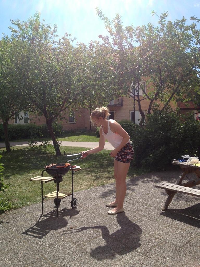 swedish summer, svensk sommar.jpg