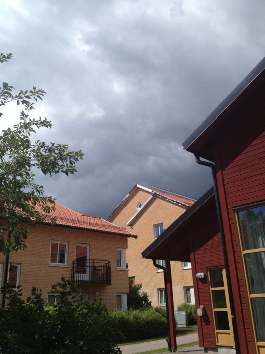 svensk sommar.jpg