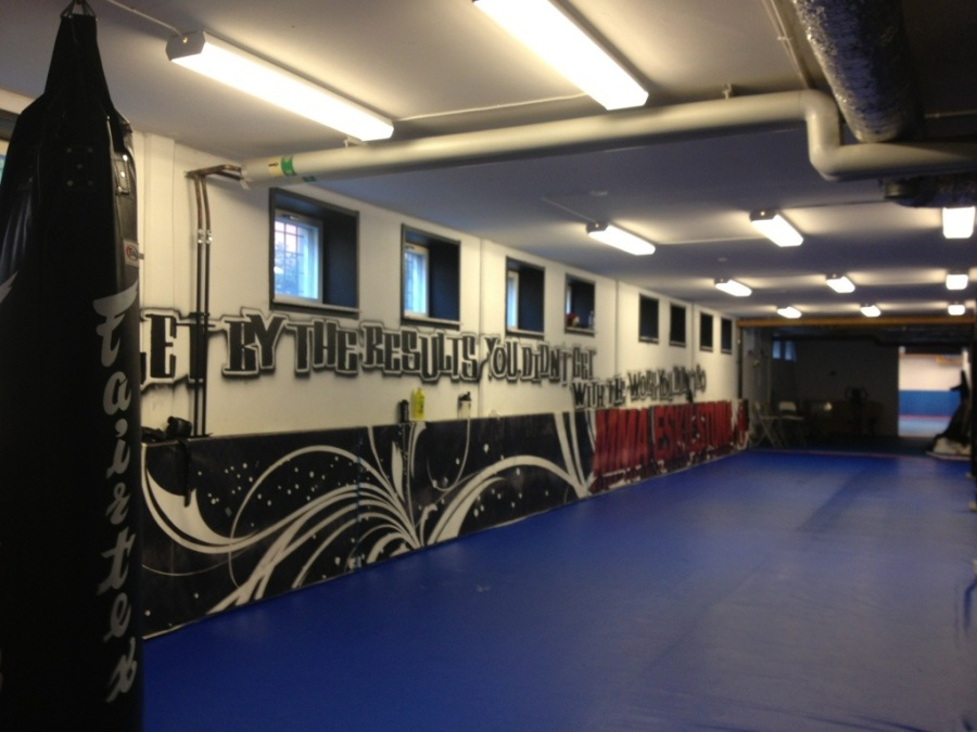 MMA Fitness eskilstuna.jpg